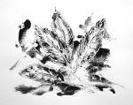 Monotype feathers